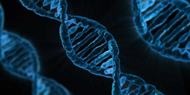 هل يمكنك الإحتفاظ ببياناتك الرقمية على الحمض النووي ؟