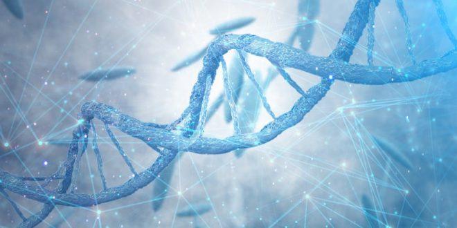 المعمل الافتراضي لاستخلاص الحمض النووي من براكسيلابس