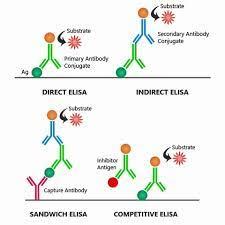 الشكل يوضح الفرق بين الاليزا المباشرة والغير مباشرة